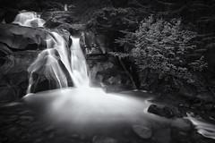 Clayton Falls - Bella Coola, BC