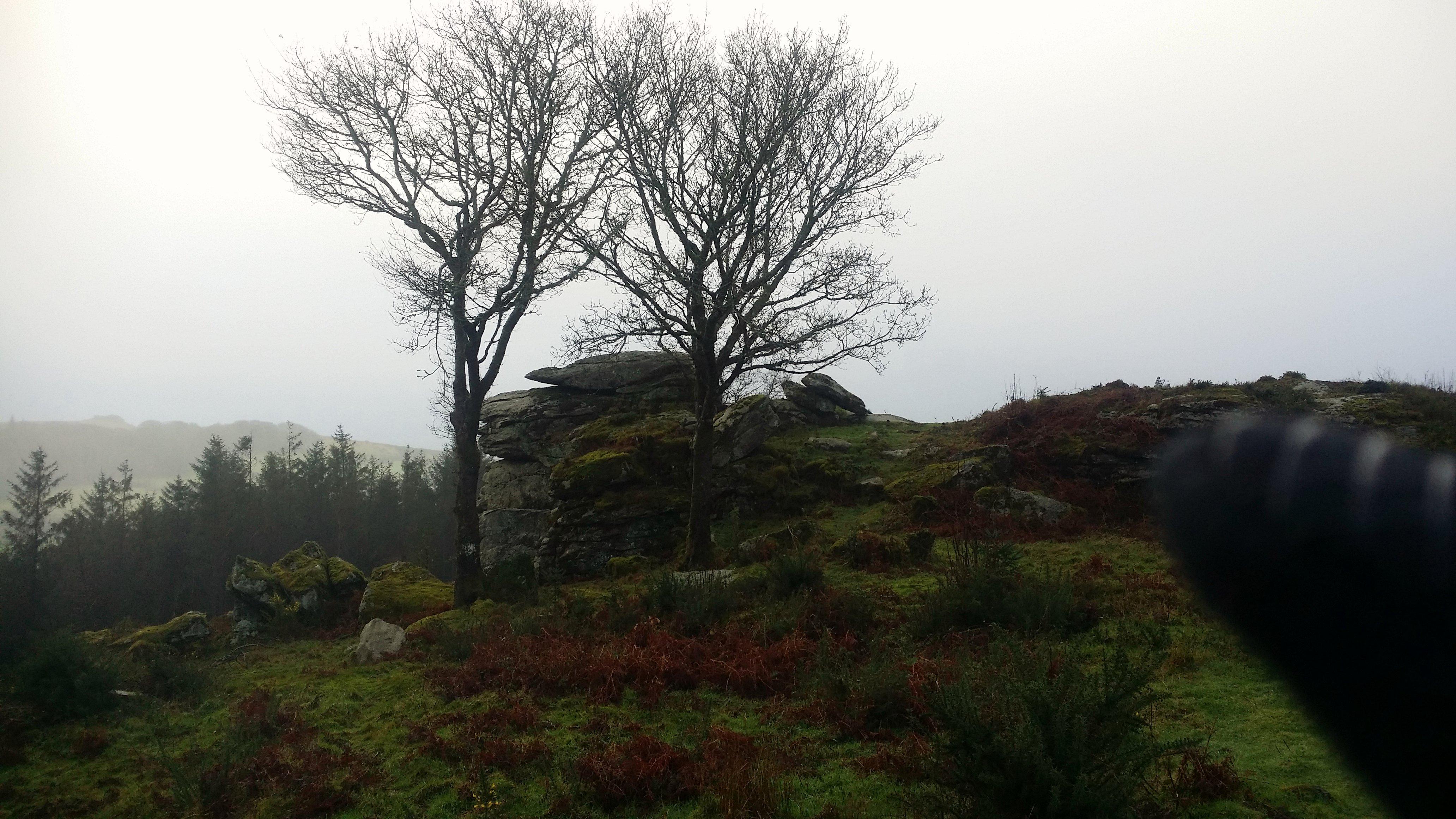 Gidleigh Tor #sh #dartmoor