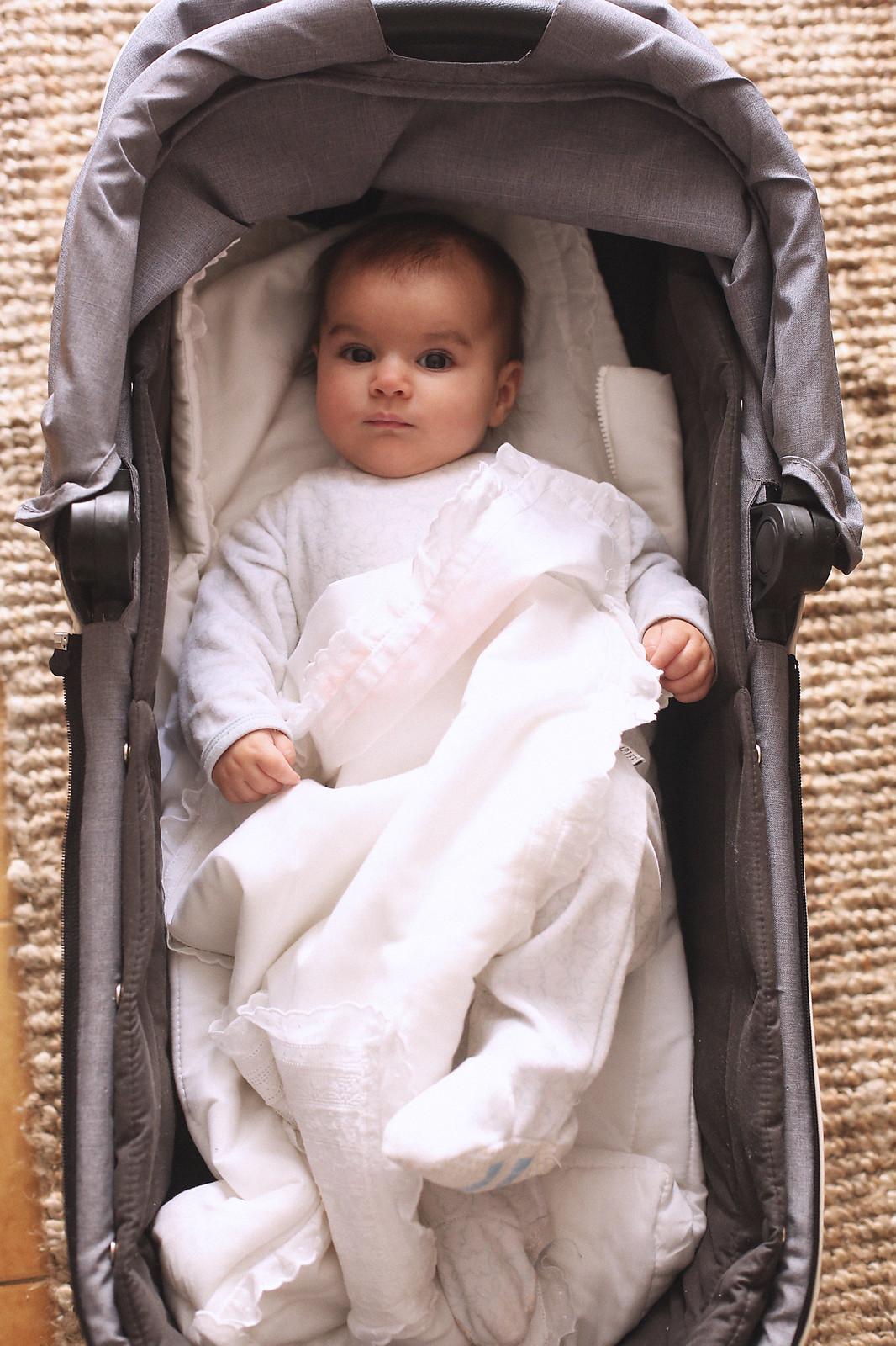 jessie chanes maternity - 2