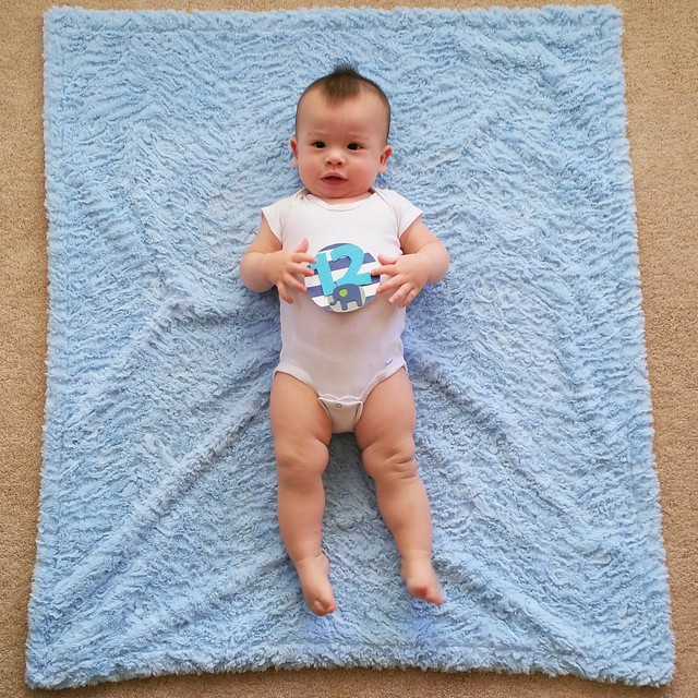 Parker's Twelve Month Photo | shirley shirley bo birley Blog