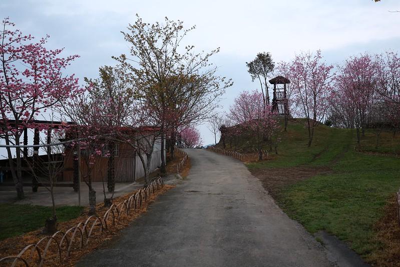 斐述景園營地A區