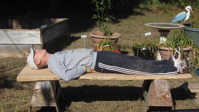 IMG_8577 tt redwood bench