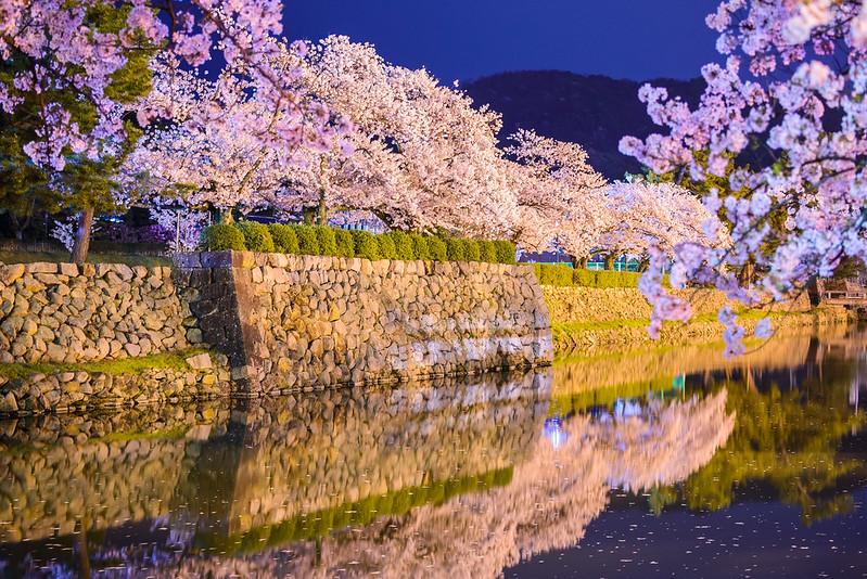 久松公園 2015-11