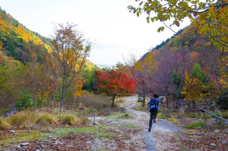 20141122-武奈ヶ岳(Saku)-0060.jpg