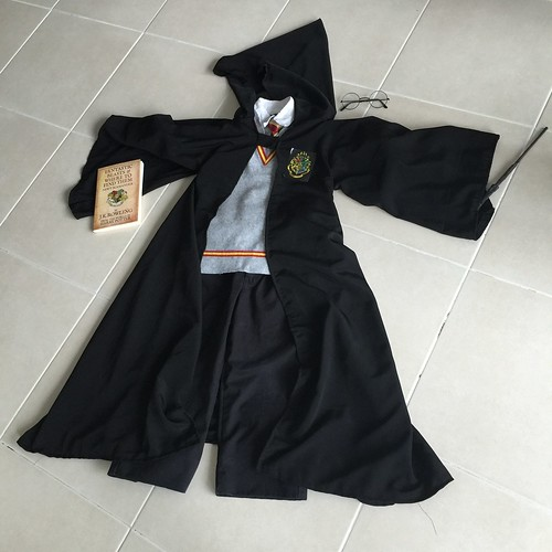 Harry Potter DIY Dress Up