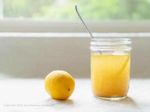21/365 Switchel with Lemon