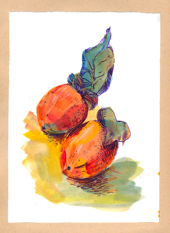 Sketchbook #93: Persimmons