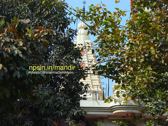Peepal tree is a large provider of oxigen and positive energy. And Shri Hari Temple surrounded by these beautiful green beauty.
