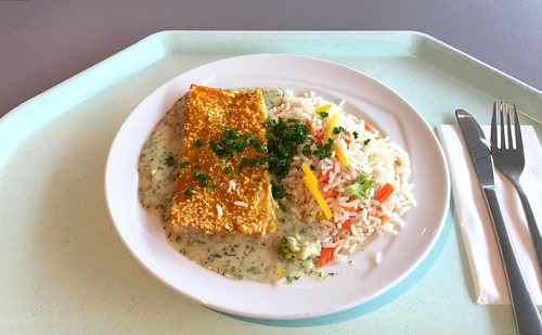 Hake in curry sesame crust with herb sauce & vegetable rice / Seehecht in Curry-Sesam-Kruste mit Kräutersauce & Gemüsereis