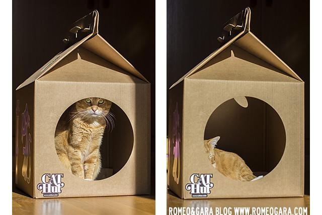 Cat Hut