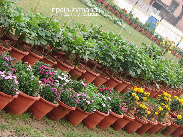 one more view: Beautifully align flower pots in plantation area under front garden.