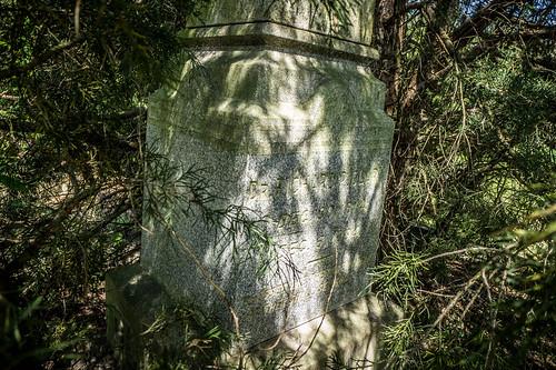Bush River Baptist Church and Cemetery-020