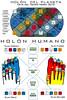 holon-humano-planetario