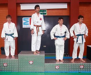 Judo Añover