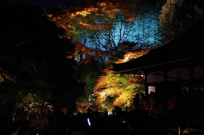 20141122-武奈ヶ岳(Saku)-0080.jpg