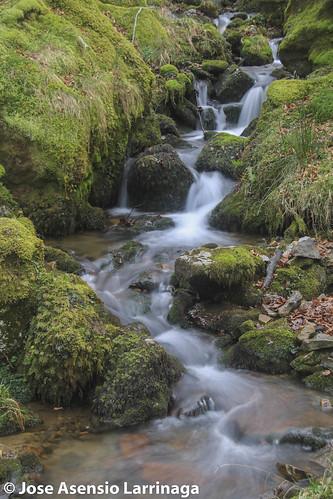 Parque Natural de Gorbeia #DePaseoConLarri #Flickr -2586