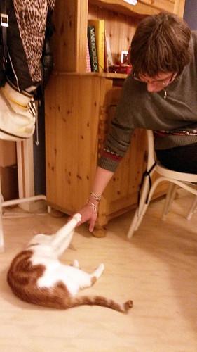 bjorns_sverigexmas-cocotesscats5