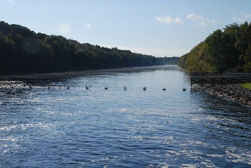 florida ocklawahariver rodmandam rodmanreservoir georgekirkpatrickdam nationwideriversinventory