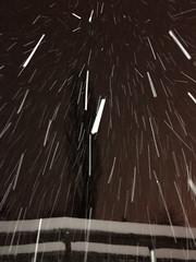 Swiss snow sabers midnight_130216