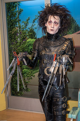 Edward Scissorhands (S000309)