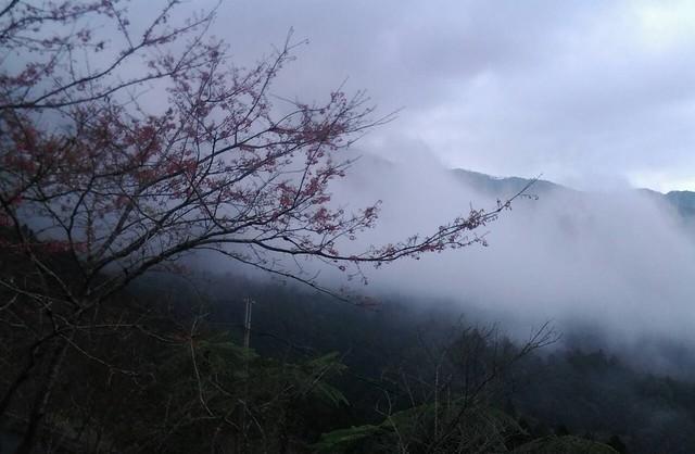 28119雲海
