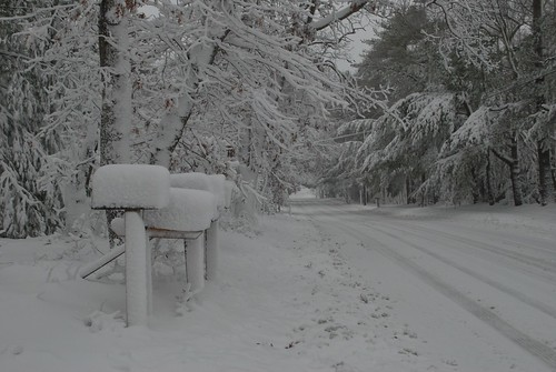 Mailboxes during Hampton Snowstorm
