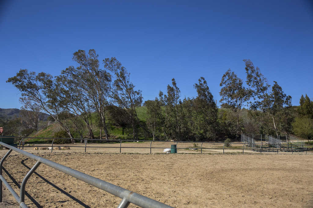 Stetson Ranch Park - 2016 After Photos
