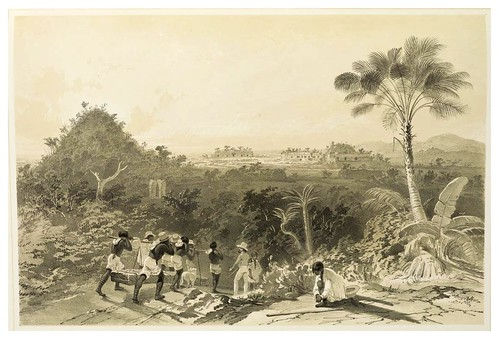007- Vista general de Kabah-Views of ancient monuments in Central America…1844- F. Catherwood