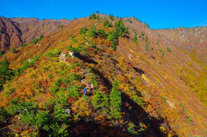 20141018-平ヶ岳saku-0029.jpg