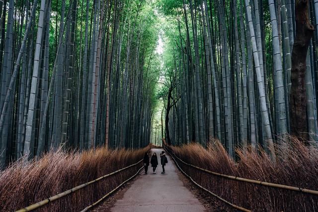 kyoto_arashimaya_13