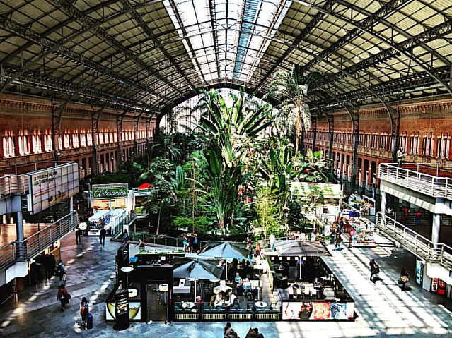 Estación Atocha #madrid #transportation #travel #renfe #trainstation #train #españa #spain #architecture #architectura