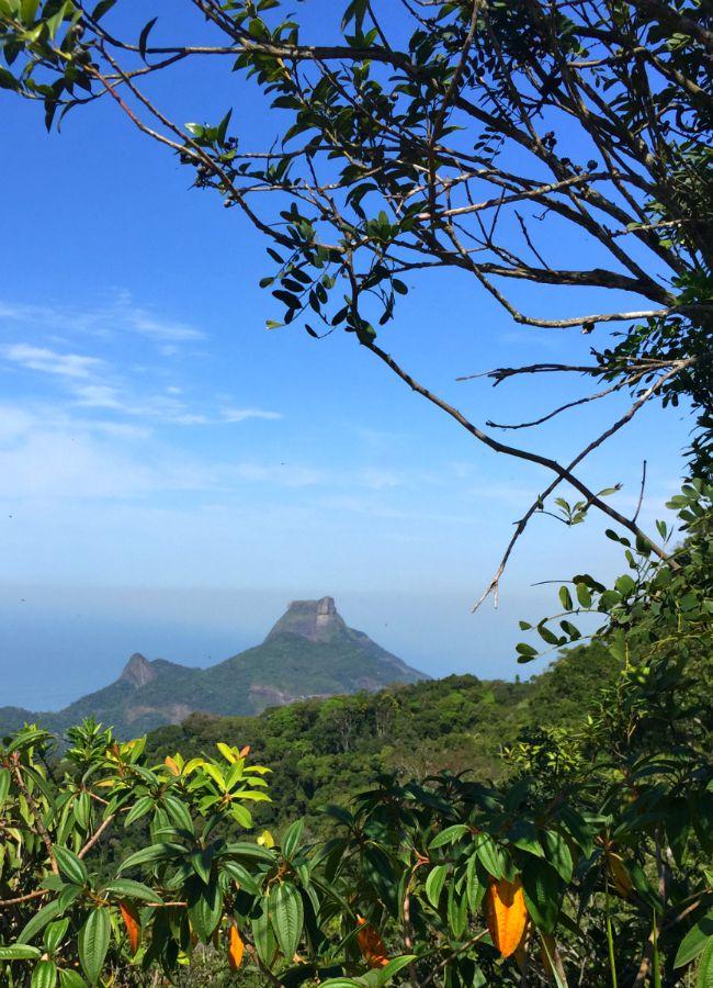 Pico da Tijuca view