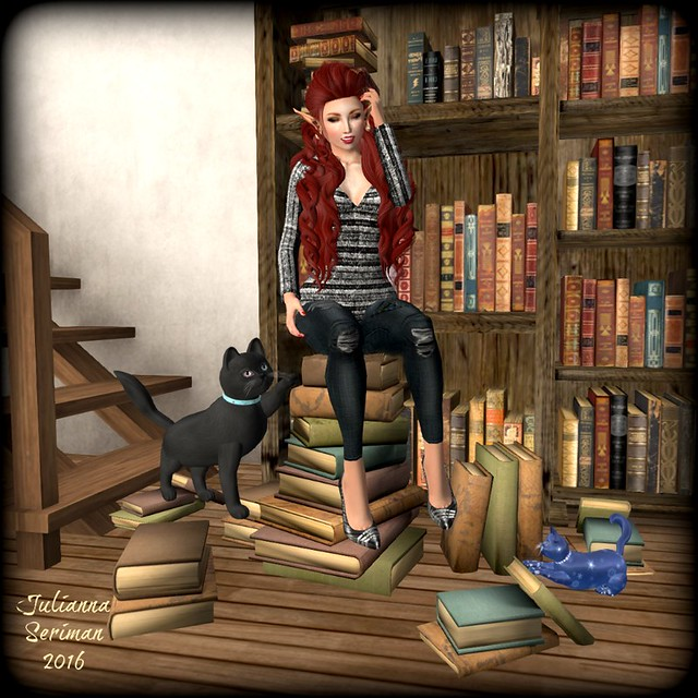 Cats, Books and Clothes