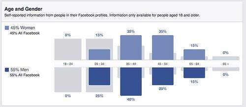 My_FB_Audience_Insights.jpg