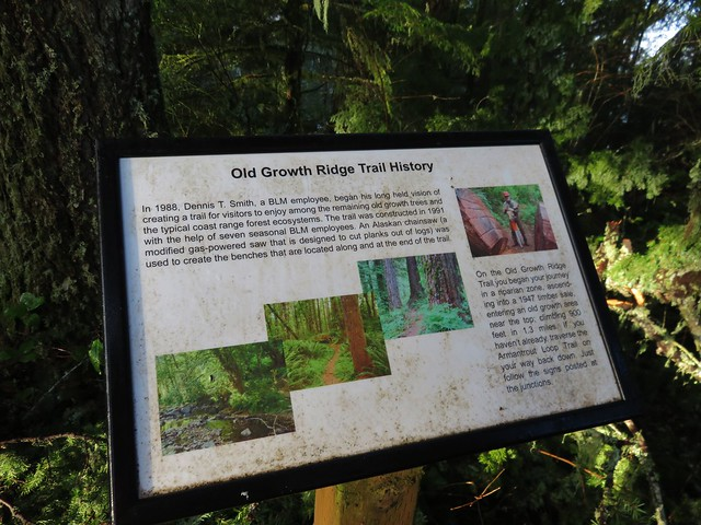 Interpretive sign at the summit of the Old Growth Ridge Trail