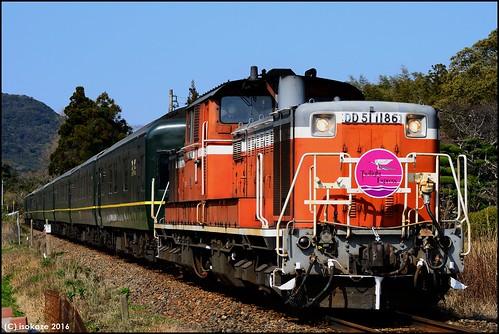DD51-1186+Twilight Express