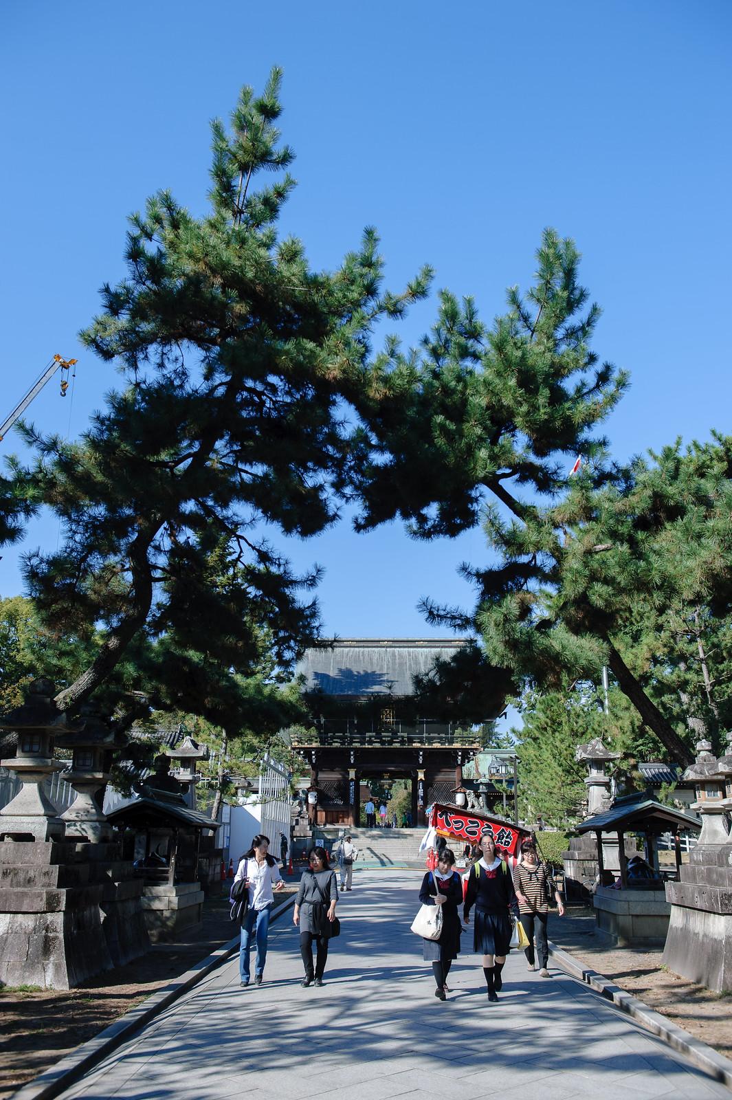 2015VQ@Kyoto-158