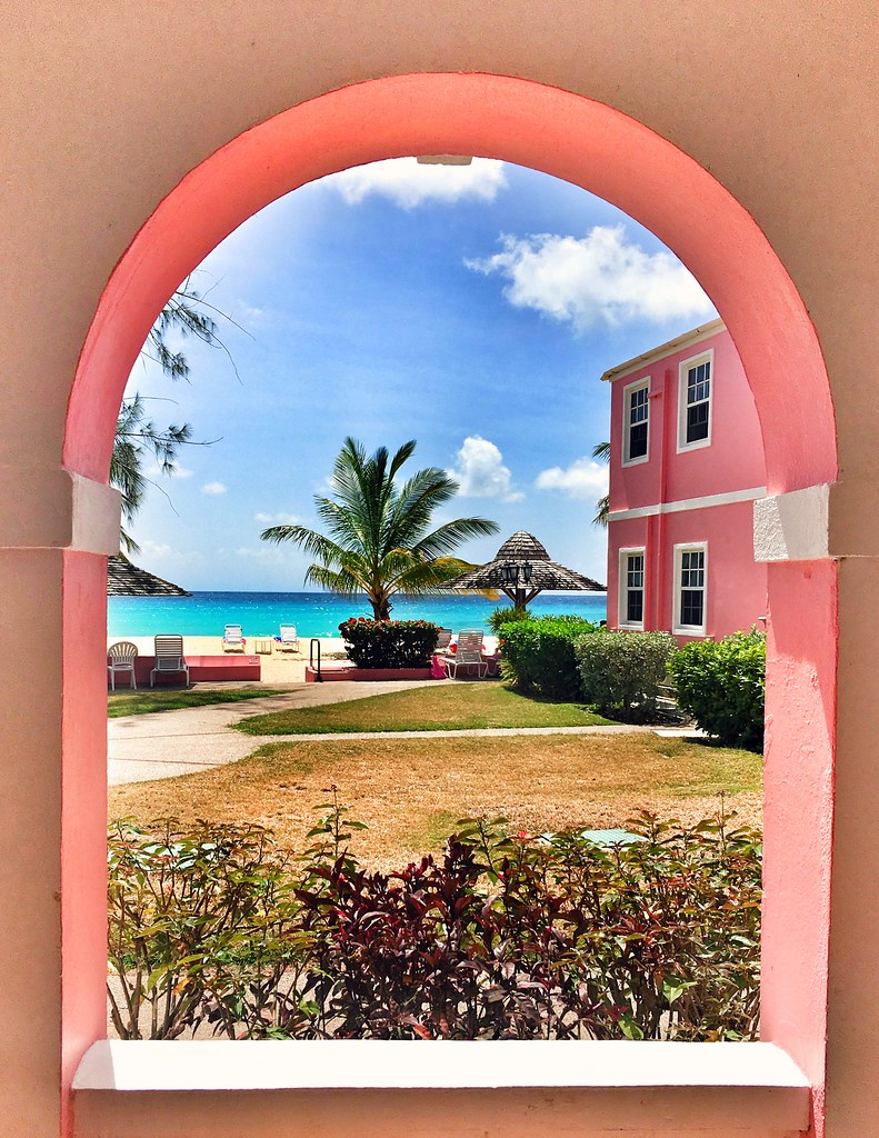 The Little Magpie Southern Palms Barbados Review 6