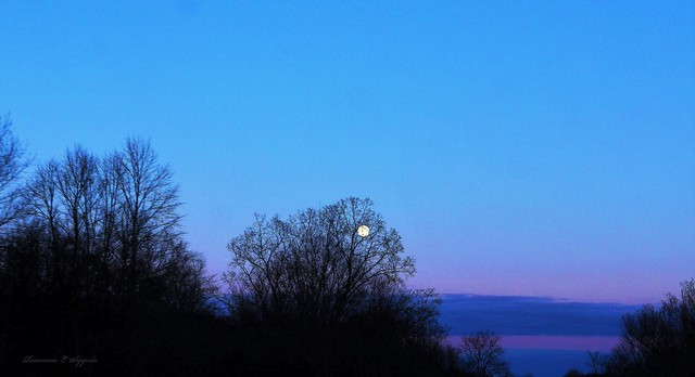 Blue Hour, Moon Rising Over 96 East Bound Going Home