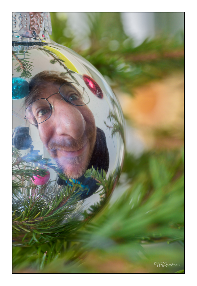 "3.- Retrato. Dic ""Autorretrato navideño"""