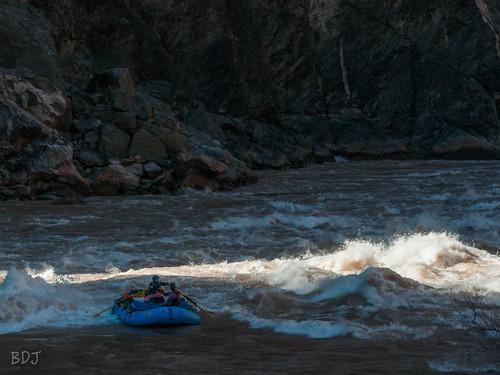 Grand Canyon 2016-354.jpg