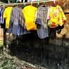 #laundry #bangkok