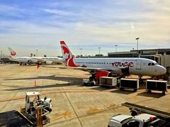 Air Canada Rouge C-FYIY A319 + JAL Japan Airlines Boeing 787-8 Dreamliner JA828J SAN/KSAN