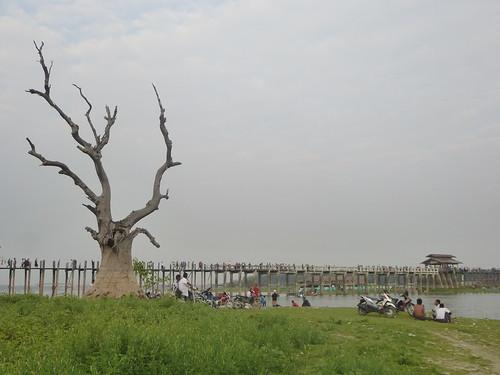 M16-Mandalay-Amarapura-Pont U Bein (18)