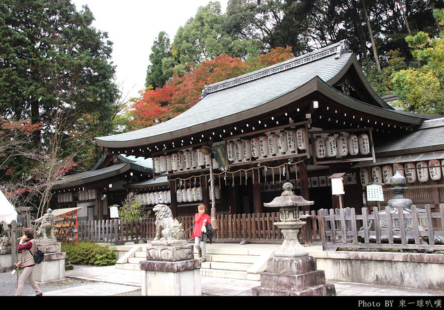 京都-哲學之道16