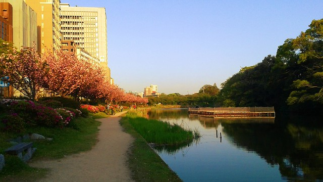 A walk in Tenjin