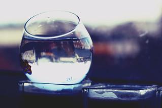 ball glass 4