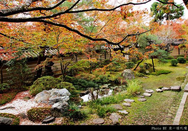 京都-永觀堂110