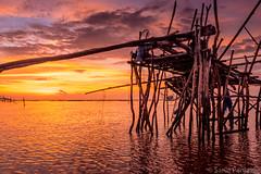 Dawn At Lake Phatthalung