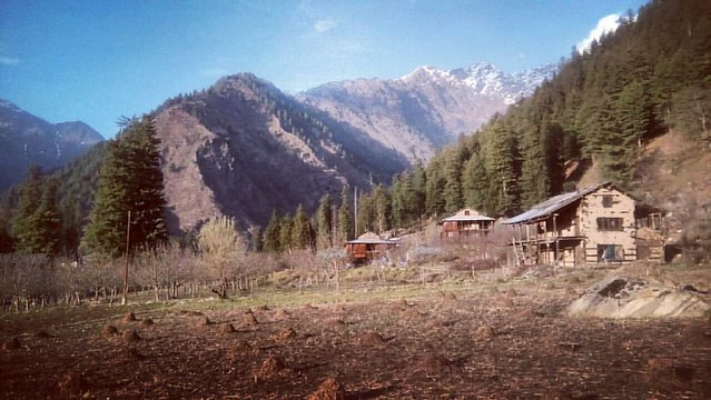 Morning from Kheerganga #HimachalPradesh